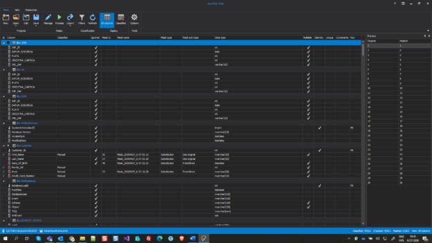 The main grid of ApexSQL Mask, in which will be selecting columns to mask SQL Server data
